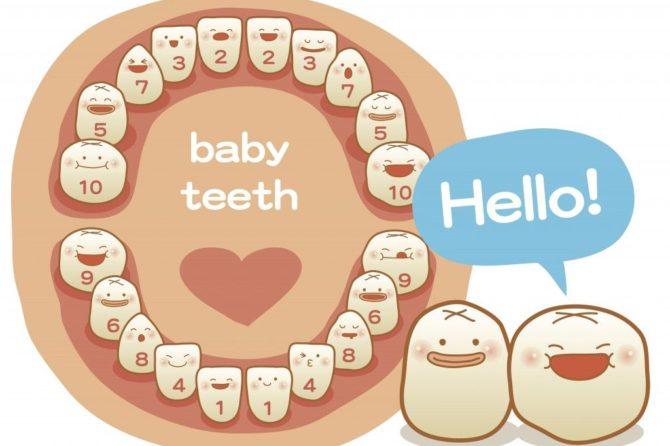 A COMPLETE GUIDE TO MILK TEETH CARE !!!!